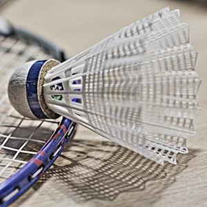 Badminton MJC Laënnec-Mermoz