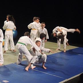 Judo MJC Laënnec-Mermoz