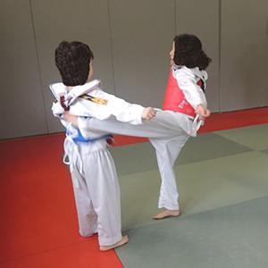 Taekwondo MJC Laënnec-Mermoz